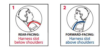 harness strap positions