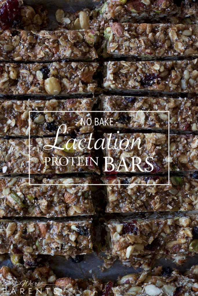 no bake lactation protein bars