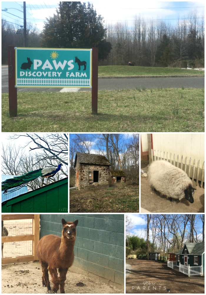Mini Of Mt Laurel >> 10 Must Do Things At Paws Discovery Farm - Mt Laurel NJ - We're Parents